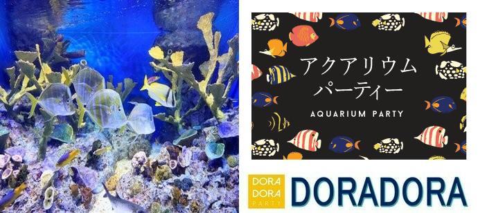 3/21 江ノ島☆飲み友・恋活に最適!出会える新江ノ島水族館合コン