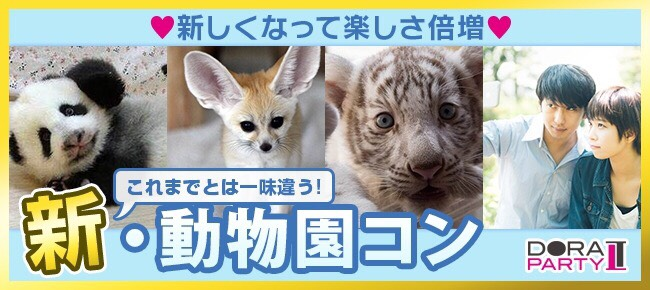 期間限定!ナイトZOO☆可愛い生き物に囲まれながら出会える野毛山動物園合コン