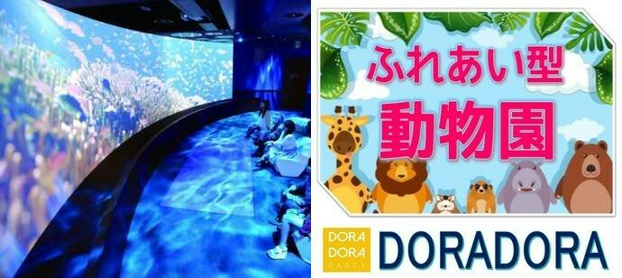 【コロナウィルス感染防止対策の為中止】4/11 オービィ横浜で開催!小動物と触れ合えるわあいの施設!最新技術と可愛い生き物に囲まれながら出会える動物園合コン