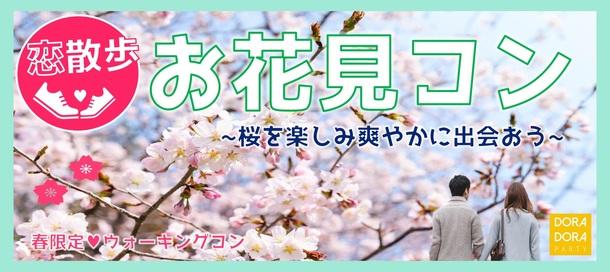 期間限定開催☆一人参加限定!大人気新宿のお花見企画