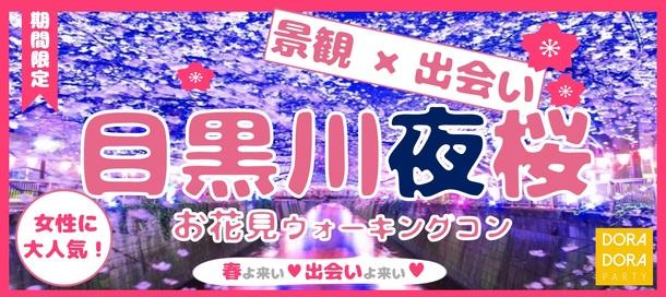 春のお散歩恋活☆幻想的な花見体験!全国1位の名所目黒川桜ウォーキング街コン