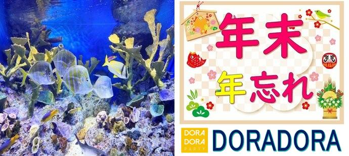 12/28 今年最後の開催!年末年始特別企画20代限定!!サンシャイン水族館合コン