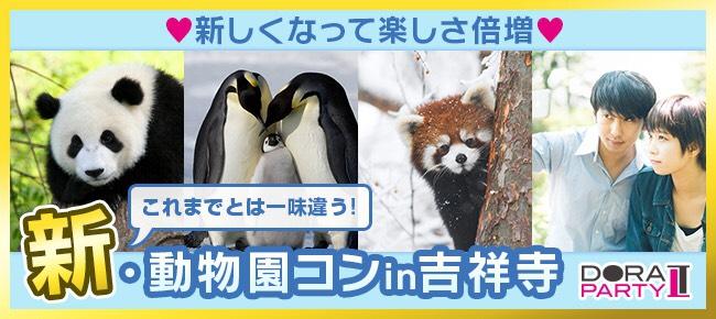 2/11 吉祥寺20歳限定 動物好き大集合☆ 同じ趣味の相手だから話題に困りません!動物園デートコン