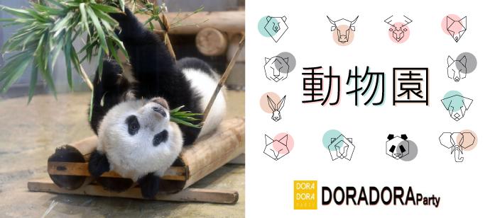 7/28 上野 ☆可愛い動物達を話題にオリジナルミッションで盛り上がる!新感覚動物園街コン
