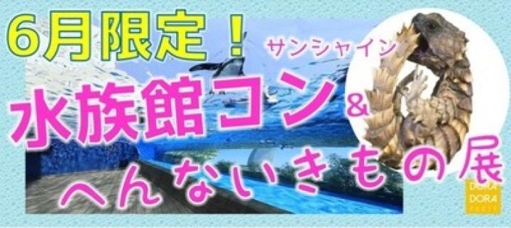 6/22 池袋☆街コン初心者・飲み友・恋活にピッタリ!初夏のリアルに出会える恋する水族館合コン