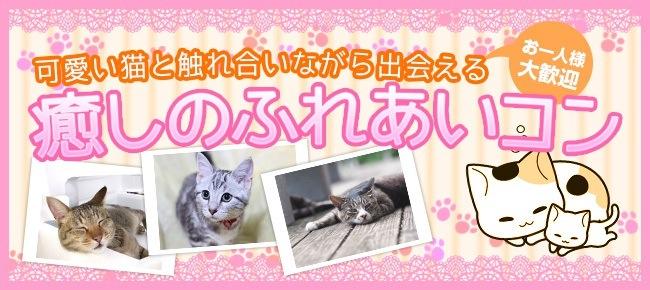 【現女性先行中・男性おススメ】7/22 渋谷 23~33歳限定!可愛い猫ちゃんと触れ合いながら出会える話題のにゃんコン