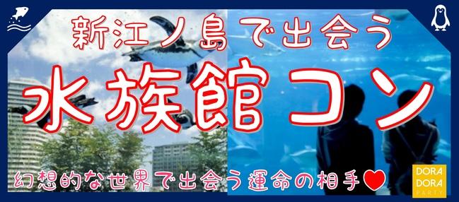 12/22 クリスマスまでに出会いたい方必見!イルミネーションに負けない海際の冬景色!新江ノ島水族館合コン!