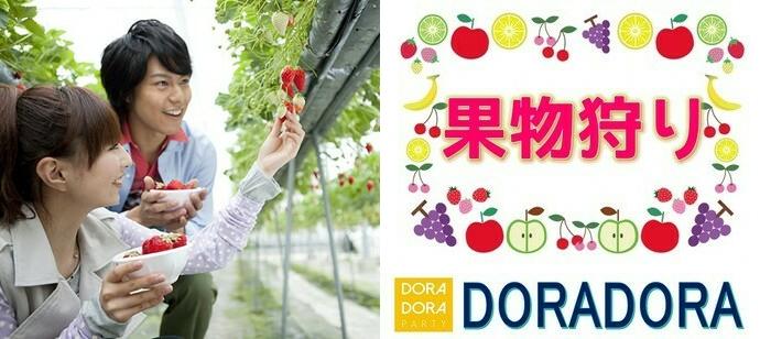 【神奈川/藤沢】11/2 食欲の秋フルーツ狩り恋活☆季節感溢れる企画です!出会える収穫体験合コン