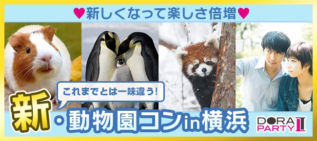 【開催中止】10/13 横浜 20~33歳限定 動物好き大集合☆かわいい動物触りたいですよね☆同じ趣味の相手だから話題に困りません!動物園デート恋活