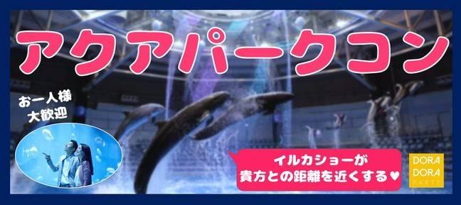 感染症対策済☆一人参加限定☆出会えるアクアパーク水族館合コン