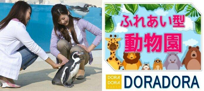 9/23 みなとみらい☆最新技術と可愛い生き物に囲まれながら出会える秋の動物園デート合コン