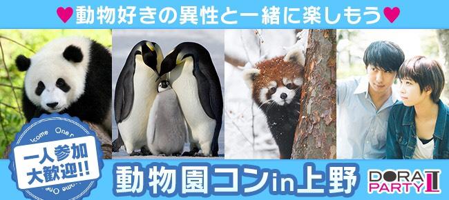 9/24 上野 かわいい赤ちゃんパンダ見れます♡動物好き大集合☆同じ趣味の相手だから話題に困りません!20~33歳限定動物園街コン